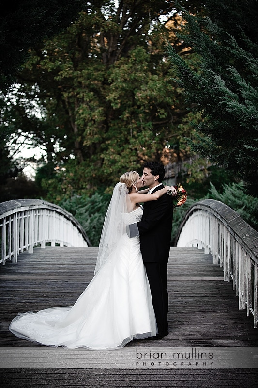 Raleigh NC wedding portrait