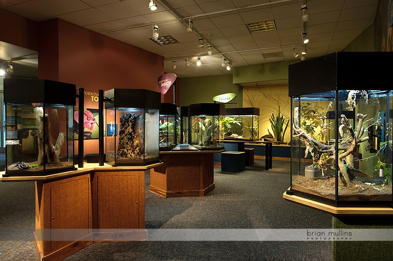 durham museum of life and science