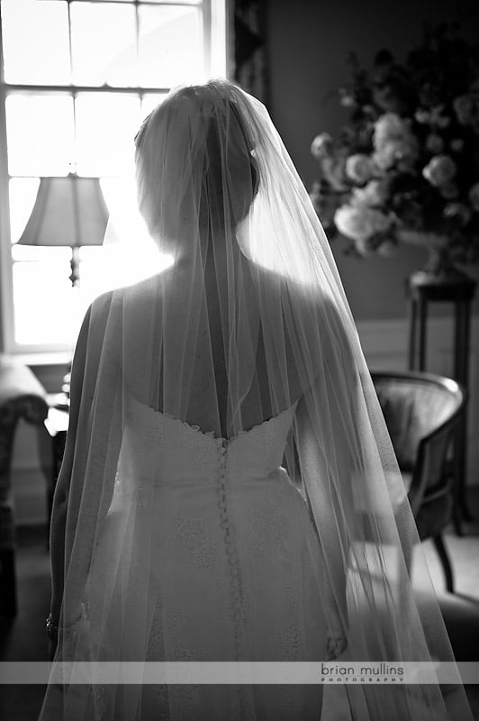 gorgeous photo of backlit bride