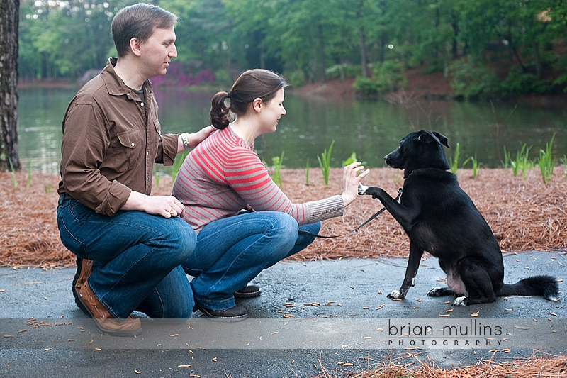 raleigh, NC engagement photography