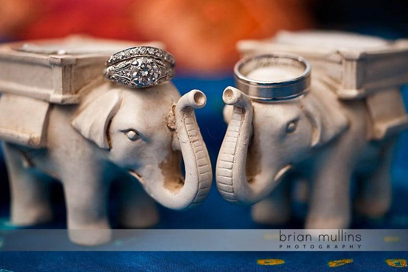 Indian Wedding Ceremony - Asheville Wedding Photographer