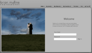 screenshot of our wedding gallery system